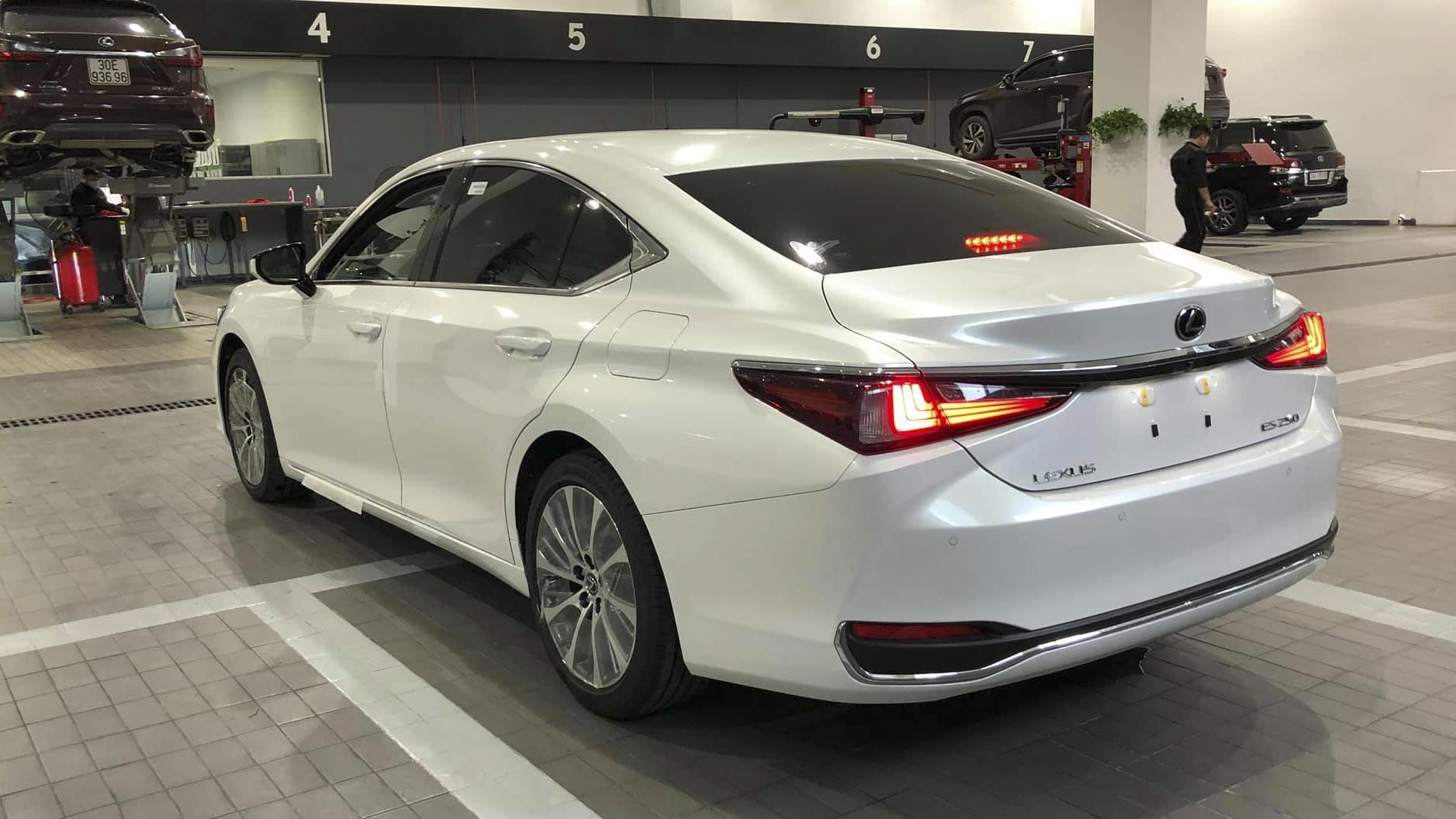 Thiết kế đuôi xe Lexus ES 250 2019